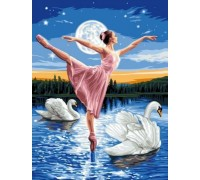 Алмазная вышивка 40 х 30 см на подрамнике Балерина и лебеди (арт. TN972)