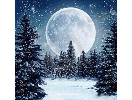 Купить Алмазная вышивка Зимний пейзаж 30 х 30 см (арт. FS177)