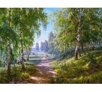 Алмазная вышивка Красота природы 50 х 38 см (арт. FS238)