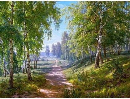 Купить Алмазная вышивка Красота природы 50 х 38 см (арт. FS238)