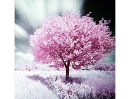Купить Комплект алмазной вышивки Сакура в цвету DIY 40 х 40 см (арт. FS275)