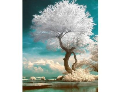 Купить Комплект алмазной вышивки Дерево жизни 25 х 20 см (арт. FS276)