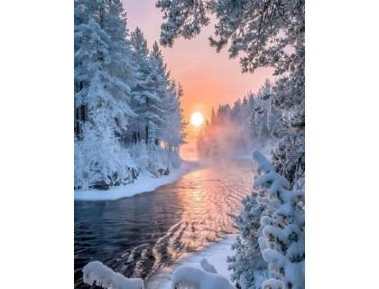 Купить Алмазная вышивка 40 х 30 см на подрамнике Тишина зимнего леса (арт. TN636)