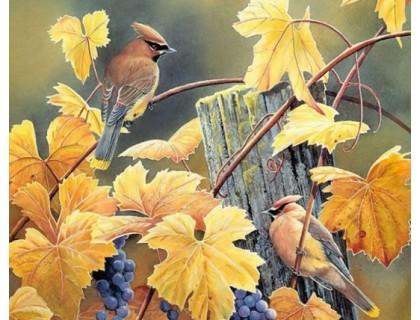 Купить Алмазная выкладка Две птицы на лозе винограда 30 х 40 см (арт. FR096)