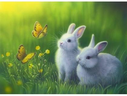 Купить Алмазная вышивка Кролики в траве 40 х 30 см (арт. FR141)