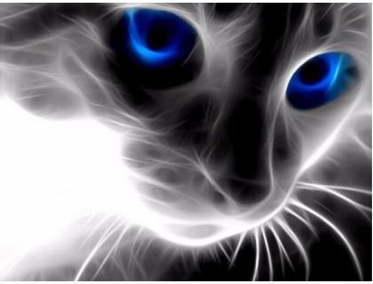 Купить Алмазная вышивка Котячий взгляд 40 х 50 см (арт. FR402)