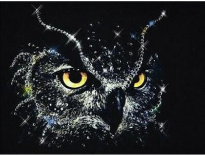 Купить Алмазная вышивка Сова в ночи 30 х 40 см (арт. FR443)