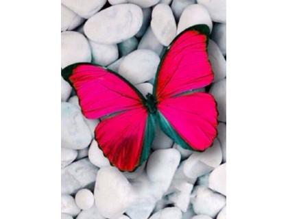 Купить Алмазная вышивка Нежная бабочка-атлас 30 х 40 см (арт. FR460)
