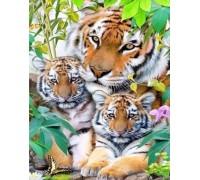Алмазная вышивка полная выкладка Тигры 30 х 40 см (арт. FR541)