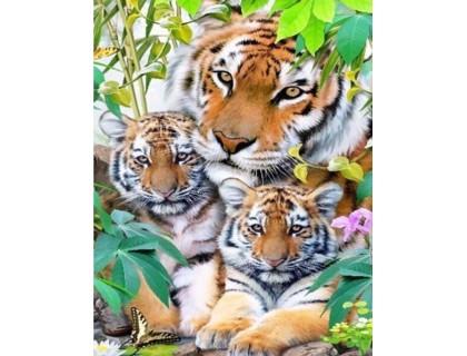 Купить Алмазная вышивка полная выкладка Тигры 30 х 40 см (арт. FS541)