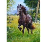 Алмазная вышивка на подарок Дикая лошадь 30 х 40 см (арт. FR547)