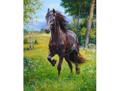 Купить Алмазная вышивка на подарок Дикая лошадь 30 х 40 см (арт. FR547)