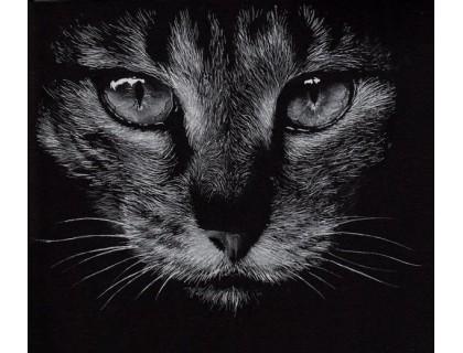 Купить Алмазна вишивка Дика кішка 40 х 40 см (арт. FR690) круглі стрази