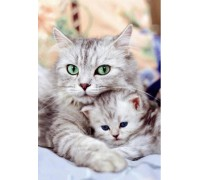 Набор алмазной вышивки Кошка с котенком 30 х 40 см (арт. FS037)