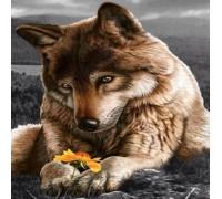 Полная алмазная вышивка Волк отдыхает 30 х 30 см (арт. FS065)