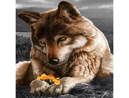 Купить Полная алмазная вышивка Волк отдыхает 30 х 30 см (арт. FS065)