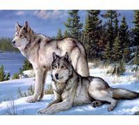 Алмазная вышивка Волк с волчицей  45 х 60 см (арт. FS459) волки