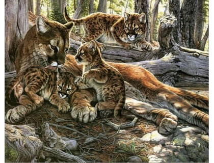 Купить Алмазная вышивка Леопард с детенышами 20 х 25 см (арт. FS070)