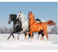 Алмазная вышивка Тройка лошадей 30 х 25 см (арт. FS086)