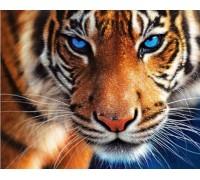 Набор алмазной вышивки Тигр 40 х 30 см (арт. FS137)
