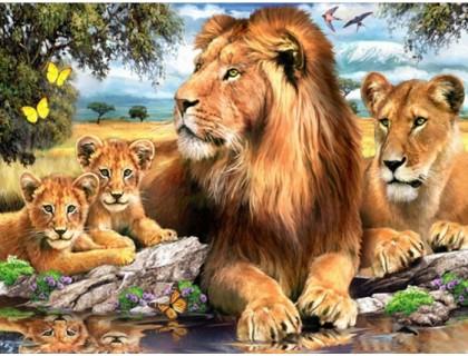 Купить Алмазная вышивка 40 х 50 см на подрамнике Семейство львов (арт. TN675)