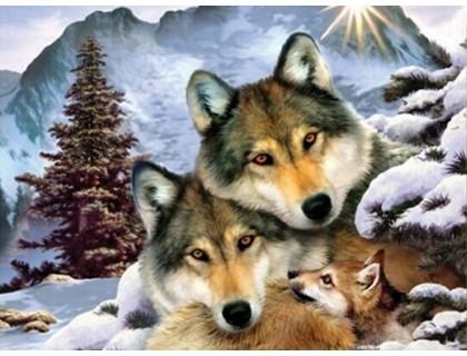 Купить Набор алмазной вышивки Три волка 30 х 42 см (арт. FS182)