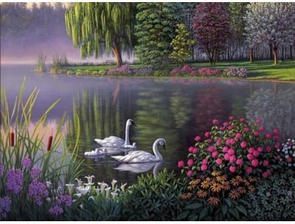Купить Алмазная вышивка Семья лебедей на пруду 40 х 30 см (арт. FS196)