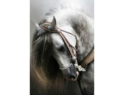 Купить Алмазная вышивка Белый конь 30 х 40 см (арт. FS286)