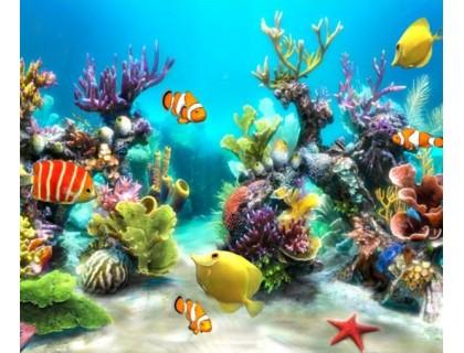 Купить Алмазная вышивка Подводный мир 60 х 50 см (арт. FS304)