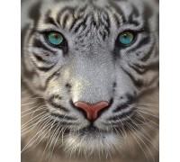 Набор алмазной вышивки Белый тигр 35 х 35 см (арт. FS314)