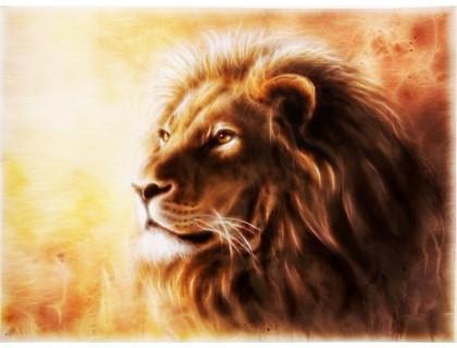 Купить Набор алмазной вышивки Огненный лев 45 х 30 см (арт. FS347)