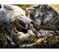 Алмазная вышивка Жители леса 30*40 см (арт. FS369) волки