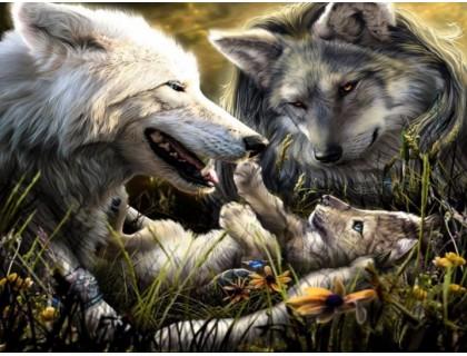Купить Алмазная вышивка Жители леса 30*40 см (арт. FS369) волки