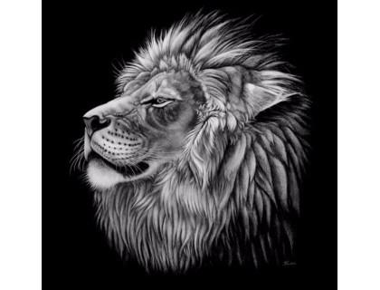 Купить Алмазная мозаика Могучий лев 40 х 40 см (арт. FS407)