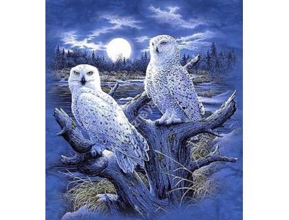 Купить Набор алмазной вышивки Белые ночные совы 30 х 40 см (арт. FS434)