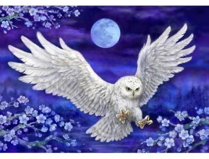 Купить Набор алмазной вышивки Полет совы охотницы 30 х 40 см (арт. FS492)