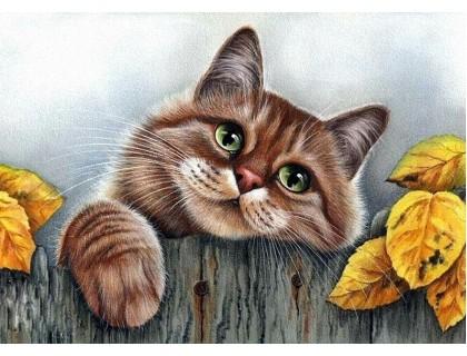 Купить Алмазная вышивка Мой любимый пушистый кот 30 х 40 см (арт. FS530)