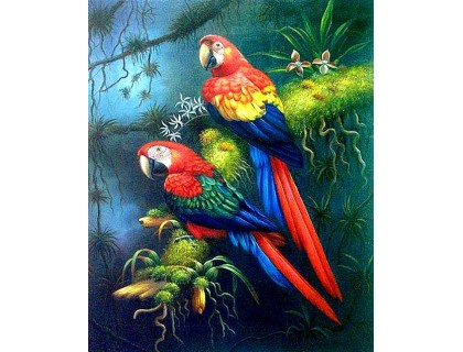 Купить Алмазная мозаика Пара пернатых попугаев 30 х 40 см (арт. FS531)