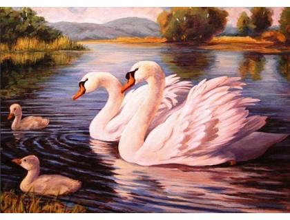 Купить Алмазная вышивка Семейство белых лебедей 30 х 40 см (арт. FS534)