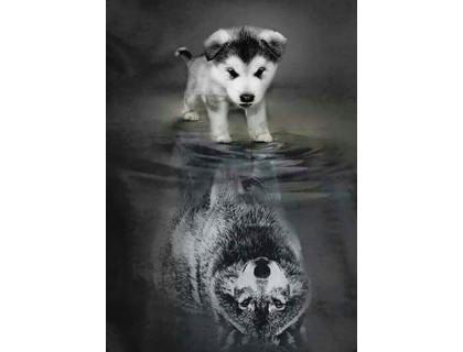 Купить Алмазна мозаїка Майбутній вовк 40 х 50 см (арт. FS641)