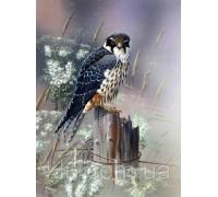 Алмазная вышивка квадратные камни Зоркая птица 40 х 50 см  (арт. FS757)