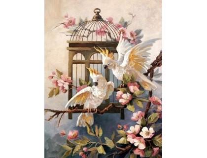 Купить Набор алмазной мозаики Верные попугаи 40 х 50 см (арт. FS794)
