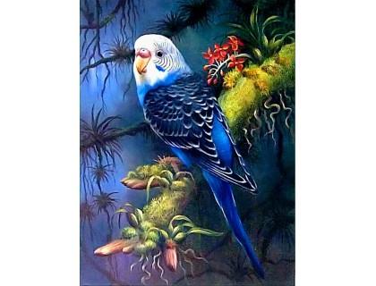 Купить Алмазна мозаїка Мій улюблений хвилястий папуга 30 х 40 см (арт. FS812)