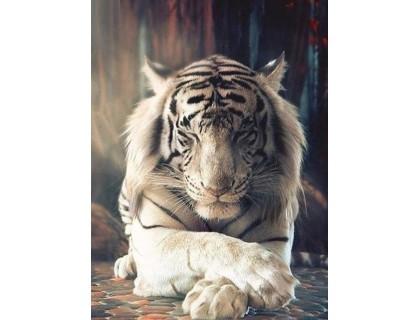 Купить Набор алмазной мозаики Белый тигр 40 х 30 см (арт. FS827)