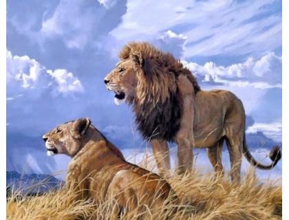 Купить Алмазная вышивка без коробки Царь зверей MyArt 50 х 40 см (арт. MA745)