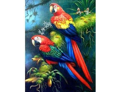 Купить Алмазная вышивка 40 х 30 см на подрамнике Яркая пара попугаев (арт. TN531)