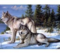 DIY Алмазная вышивка на подрамнике Семейство волков 50 х 40 см (арт. TN558) волки