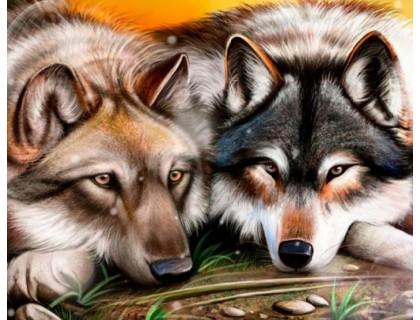 Купить Алмазная вышивка 50 х 40 см на деревянном подрамнике Пара волков (арт. TN893)