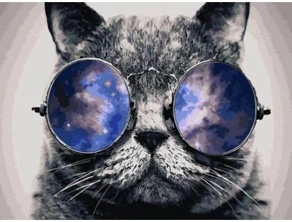 Купить Алмазная вышивка на подрамнике 40 х 30 см Кот в очках (арт. TN980)