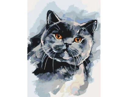 Купить Картина по номерам без коробки Идейка Любимый котик 30 х 40 см (арт. KHO4035)